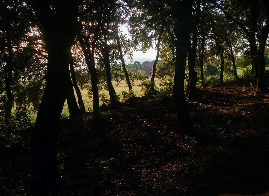 La Calma, el Montseny
